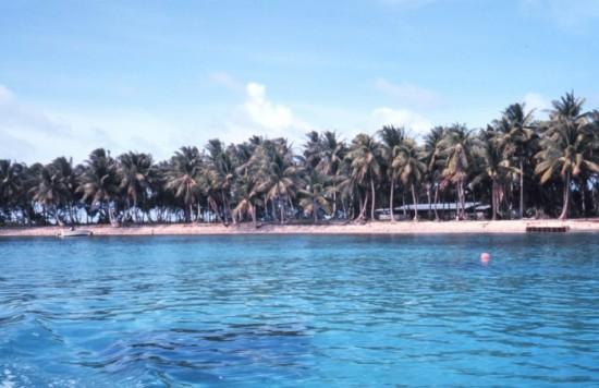 Shoreline_majuro